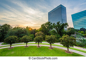 Trees and modern buildings in Columbia, South Carolina.