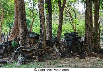 Trees and ruin Prasat Muang Singh, Kanchanaburi.