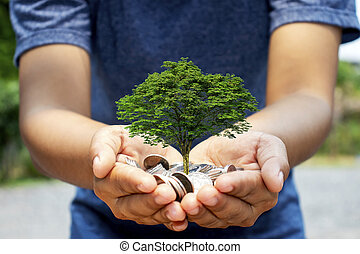 Trees are planted on coins in the hands of humans. The concept of financial growth and business investment.