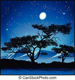 Trees at starry night