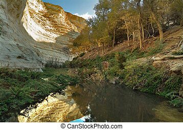 Trees at water - Picturesque canyon Ein-Avdat in desert...