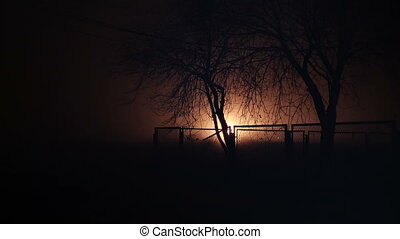 Trees behind a fence at night and light effect. - Trees...