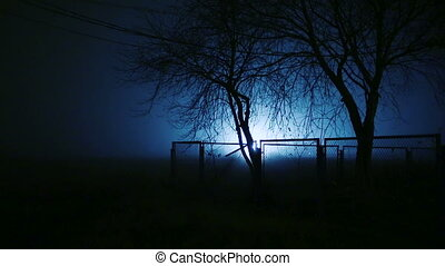 Trees behind a fence at night. - Trees behind a fence at...