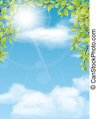 trees branches with green leaves on blue sky background -...