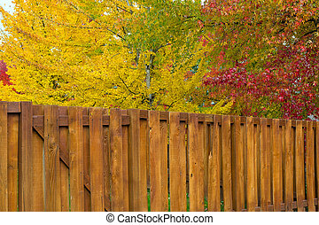 Trees by Backyard Wood Fence in Fall Colors