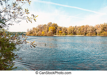 Trees Close to the River in Autumn