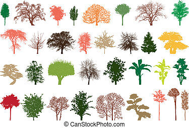 trees, colour - illustration