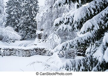 Trees Covered With Snow In Winter