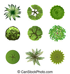 Trees top view for landscape design. Use in your design...
