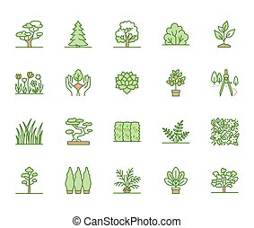Trees flat line icons set. Plants, landscape design, fir tree, succulent, privacy shrub, lawn grass, flowers vector illustrations. Thin green signs for garden store