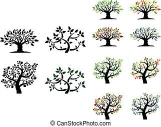 Trees - Four season trees