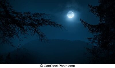 Full moon at night with large trees moving in the breeze