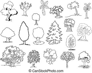 Hand drawn trees of different kinds