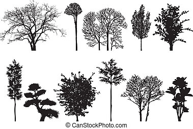 trees - illustration, collection