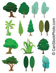 Trees illustration in vector