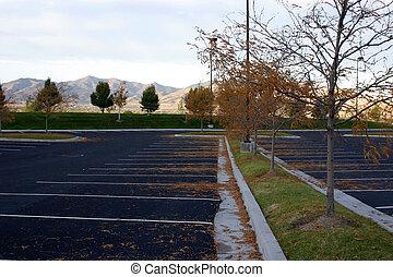 Empty Parking Lot - Trees in an Empty Parking Lot