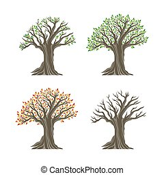 Trees in four seasons realistic decorative icons set isolated on white background.