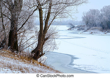 Trees in hoarfrost on the river bank