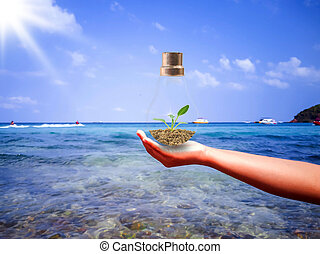 Trees in the lamp are in the hands of people in the sea with the concept of environmental conservation and global warming.