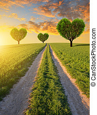 Trees in the shape of heart