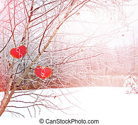 Trees in the snow. Heart.