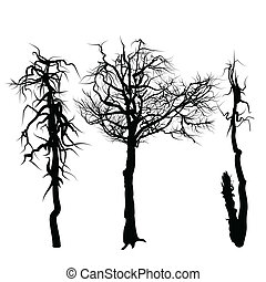 Trees isolated on white background.
