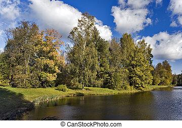 Trees near the pond