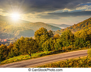 trees on a hill side near the mountain road at sunset - few...