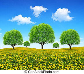 Trees on meadow with dandelions.