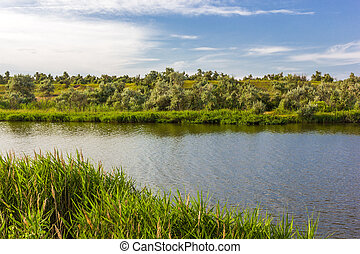 trees on the banks of the river and the blue sky with clouds