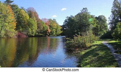 Trees over the pond in the autumn P