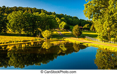 Trees reflecting in a pond in the Shenandoah Valley,...