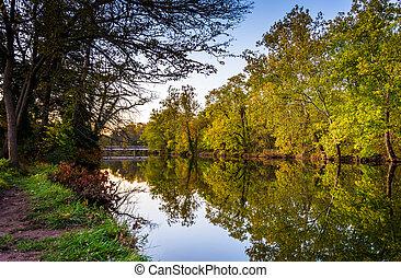 Trees reflecting in Marsh Creek, near Gettysburg,...