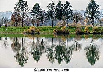 trees reflecting in the lake, the symbol of melancholy, ...