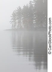 Trees reflection at lake foggy morning