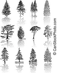 Trees - Tree  silhouettes