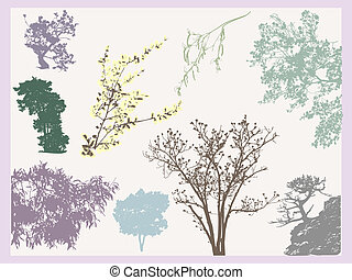 Trees tracing - Set of natural tree and branches tracing...