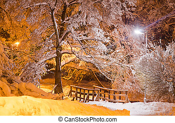 trees under snow and wooden bridge in winter evening