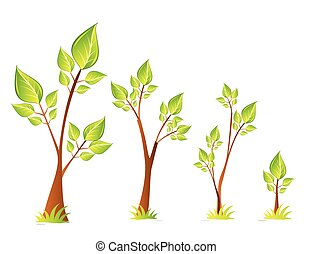 Trees vector design set