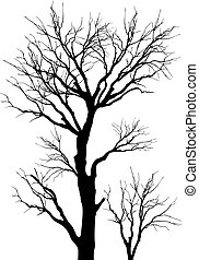 trees - vector illustration intricate detailed tree branches...