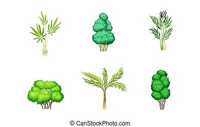Trees with Exuberant Green Foliage and Trunk Vector Set. Deciduous Woods with Lush Vegetation Concept