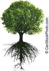 Trees with roots. This image is a vector illustration and...
