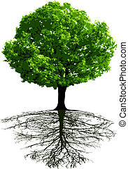Trees with roots - This image is a vector illustration and...