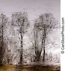 trees without leaves are reflected on the water surface of a lake covered with thin ice