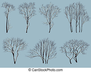 Trees without leaves with snow.