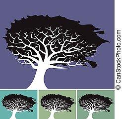 trees_splat