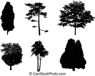 treesilhouettes