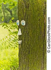 treetrunk, cara