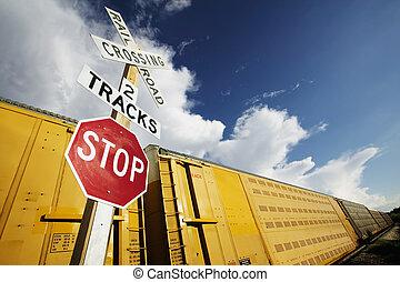 trein, op, kruising