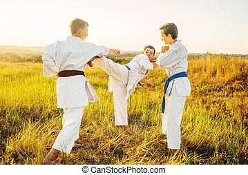 treinamento, ao ar livre, lutadores, luta, caratê, júnior